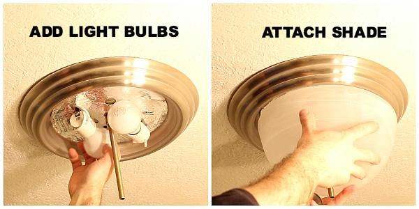Add Light Bulbs and Shade