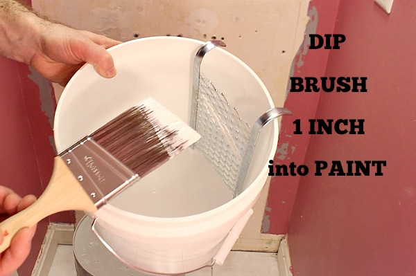 Dip Brush 1 Inch into Paint
